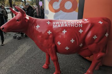 Swiss City Marathon
